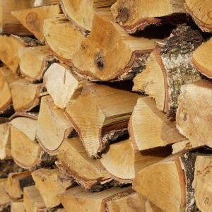 Birkenholz in Palette
